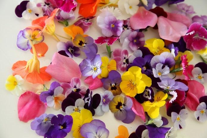 В Турции выращивают электрические цветы для усиления вкуса
