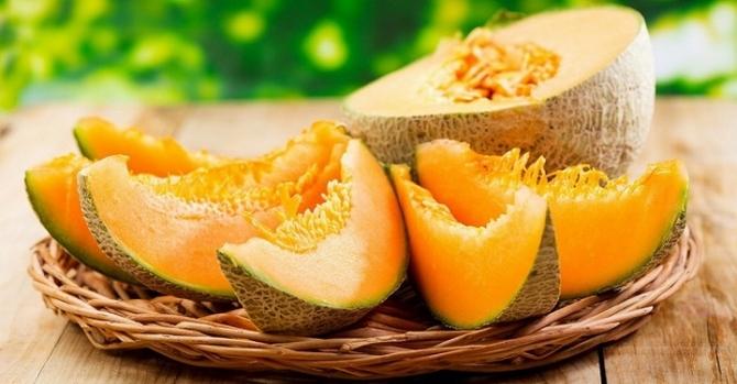Дыня Своячка дает вкусные и очень крупные плоды