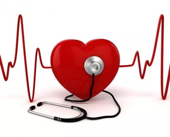 сердце недуги питание