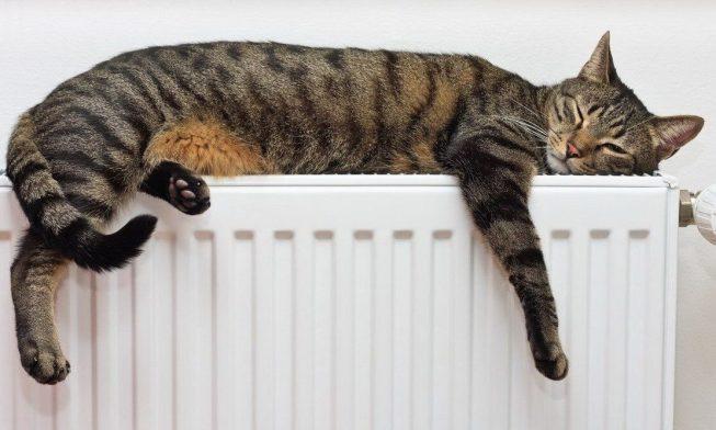 Опалювальний сезон в Україні: чи вистачить усім газу?