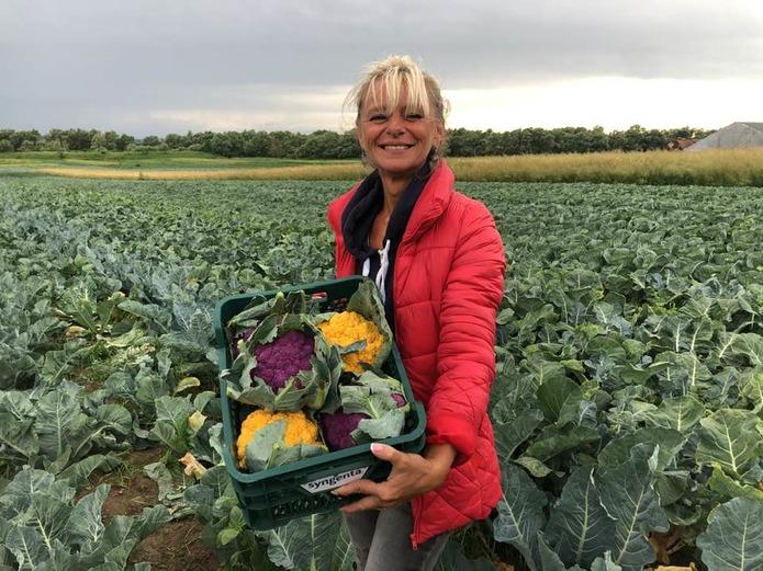 Львовские фермеры выращивают капусту, за которой выстраиваются очереди