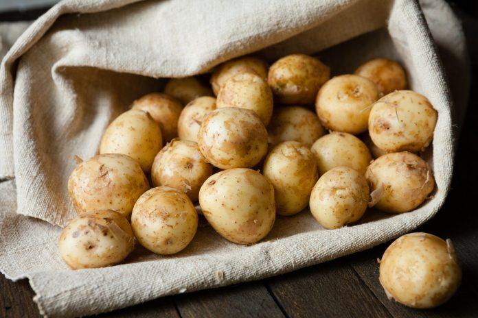 Почему импортный молодой картофель дешевле украинского?