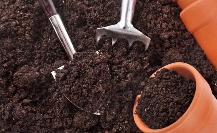 Секреты плодородной почвосмеси для будущей рассады