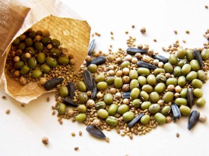 Які хвороби переносить насіння