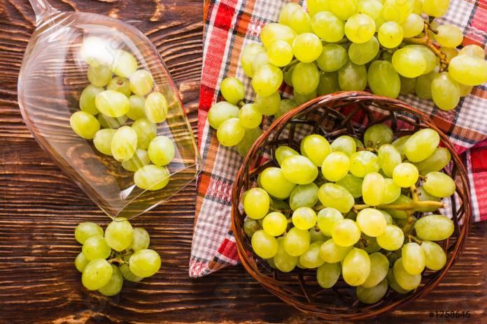 Виноградарь из Киевской области выращивает самые крупноплодные и вкусные сорта