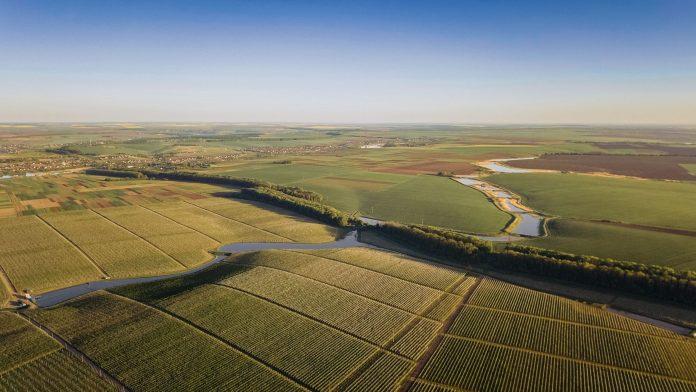100 днів ринку землі: вартість гектара та кількість угод