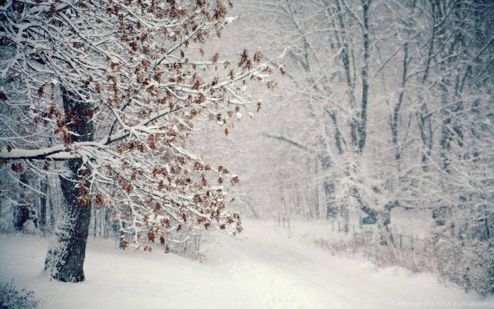 Синоптики зробили прогноз на прийдешню зиму