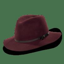 Lise Meitner Hat $140