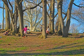 kids playing in Fort Greene park