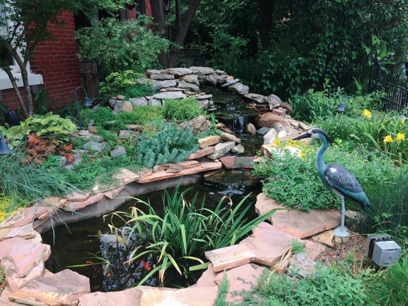 Ponds at Monells