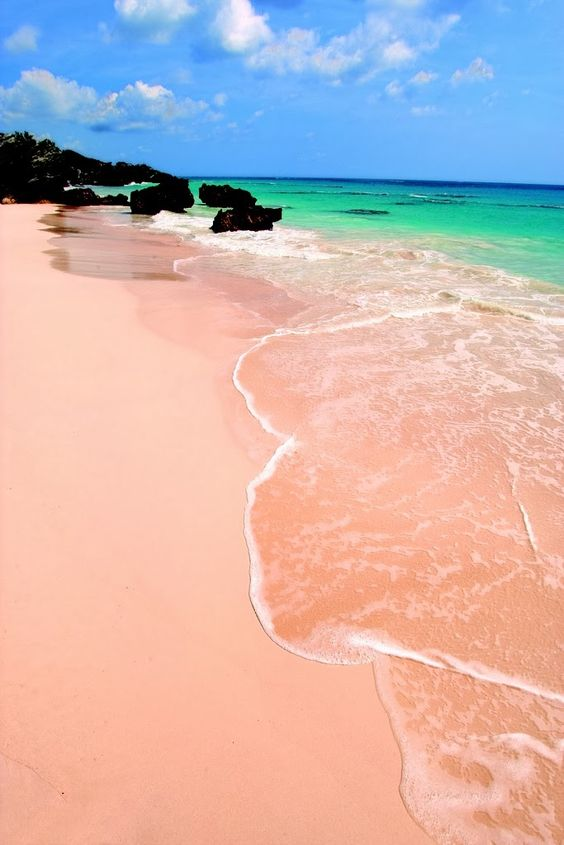 elbow-beach-bermuda
