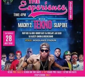 The Experience Concert With Tekno