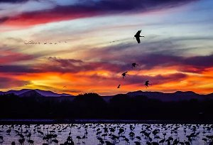 Randy Dykstra Sunset Basque Del Apache