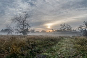 Dave Devore - Ethereal Sunrise over Berry Springs Park