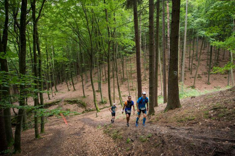 Podejście na Tricity Trail. Fo. Piotr Dymus