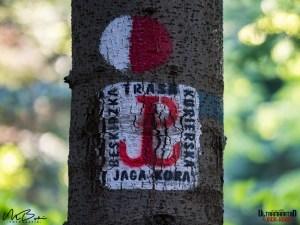 Fotografia: Michał Buczyński/Ultramaraton Jaga-Kora