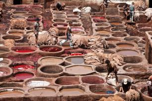 May 2008 Leather tanning vats, Fes, Morocco