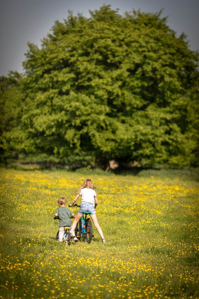 May 2018, Hatfield Forest, Essex, UK
