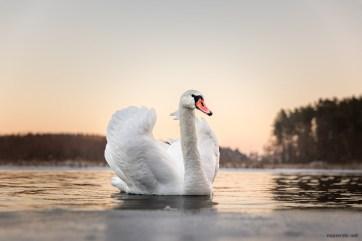 February 2021, Lake Bachotek, Brodnica, Poland