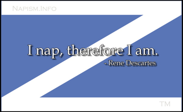 Nap Flag with Quote 1