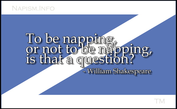 Nap Flag with Quote 3