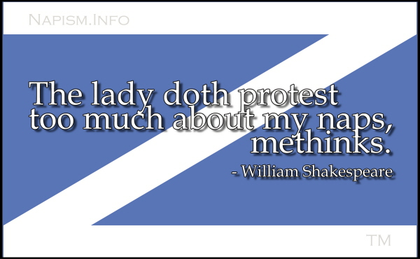 Nap Flag with Quote 4