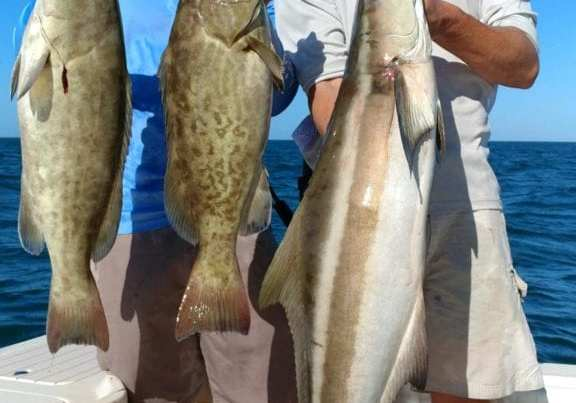 fisherman with grouper and cobia
