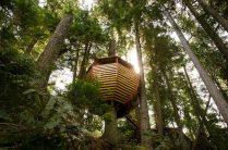 design-hemloft-treehouse-in-the-woods