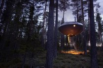 ufo-room-part-from-treehotel