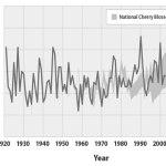 CHERRY-BLOSSOMS-peak-bloom-wash-dc-GRAY