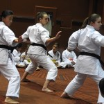 karate-girls