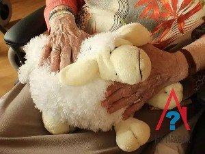 Может ли претендовать на наследство внук или внучка после смерти бабушки