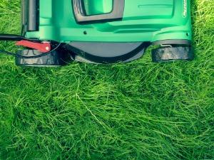 Кто должен косить траву на придомовой территории МКД