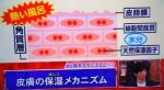ホンマでっか!?TV 長澤まさみ&  高橋一生の悩みを振り返る2