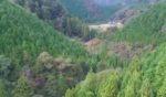 ポツンと一軒家を振り返る 1000坪の棚田が広がる高知県の山奥