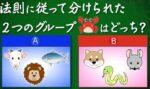 あなたは小学5年生より賢いの?を振り返る 菊地亜美、ラウール