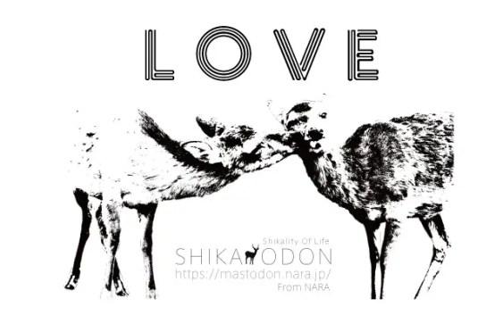 shop img full 27799 - 「奈良の鹿愛護の会」様のブログでチャリティーT-シャツを取り上げて頂きました。