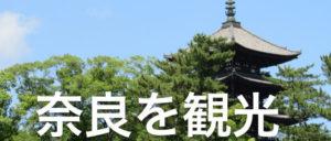 奈良を観光