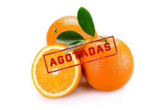 Agotadas las naranjas ecológicas de mesa