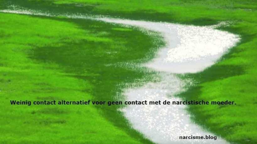 Weinig contact een alternatief voor geen contact met narcistische ouder.