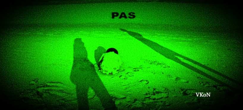 What do you know about Parental Alienation Syndrome – Pas?