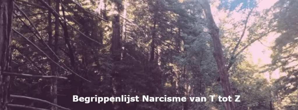 Begrippenlijst Narcisme van T tot Z Deel 1