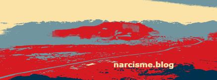Belangrijke juridische informatie over online inkomsten. narcisme.blog VKoN Solidariteit met slachtoffers van narcist(e)