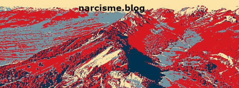 bewustzijn narcisme blog : door mijn teksten te lezen zul je manieren ontdekken om een narcist te spotten en het dan ook grondig begrijpen met verschillende ervaringsverhalen, je vindt er definities en meer uitleg over de pathalogie van narcisme.