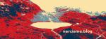 netwerken narcisme.blog VKoN Solidariteit met slachtoffers van narcist(e)