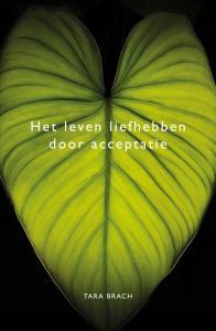 het leven liefhebben door acceptatie cover boek