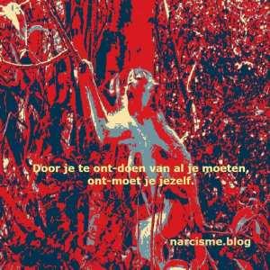 narcisme.blog Door je te ontdoen van al je moeten ontmoet je jezelf.