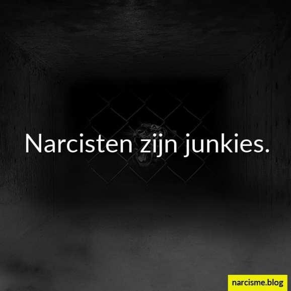narcisten zijn junkies hoe een narcist uw vertrouwen krijgt