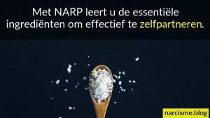 narcisme.blog Met NARP leert u de essentiële ingrediënten om effectief te zelfpartneren