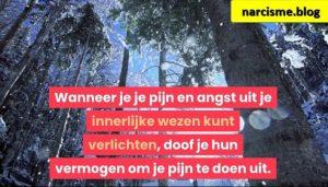 hoge bomen voor narcisme.blog